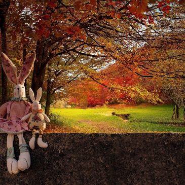 Strick- und Spielenachmittag am 11. Oktober und ein gemeinsamer Spaziergang am 25. Oktober